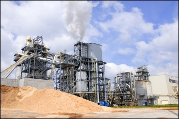 Tricoya wood chip factory